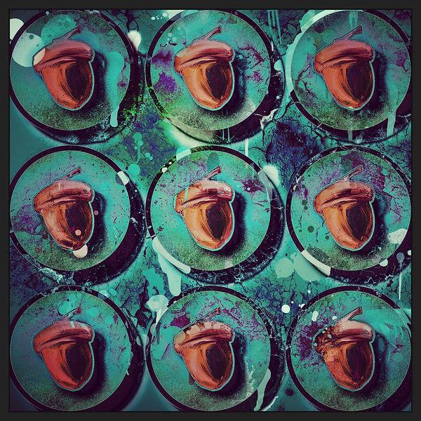Nine Acorns