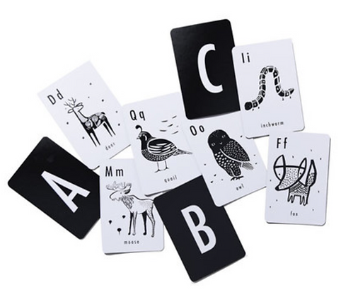 Cartes Alphabet animaux