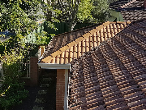 Gutter Cleaning Perth, Perth Gutter Cleaner, Gutter Cleaner Perth, Gutter Cleaning Perth, Gutter Cleaner, Perth Gutter Cleaner, Gutter cleaner Perth, Gutter Cleaning, Gutter Cleaner, Gutter Cleaners perth, Perth Gutter Cleaners, Perth Gutter Cleaning, Gutter Cleaning Harrisdale, Gutter Guards Perth, Perth gutter cleaners, gutter cleaning perth, gutters perth, perth gutters, gutter guards perth, perth gutter cleaning, Gutter Cleaning Perth WA, Gutter Cleaning Perth, Perth Gutter Cleaner, Gutter Cleaner Perth, Gutter Cleaning Perth, Gutter Cleaner, Perth Gutter Cleaner, Gutter cleaner Perth, Gutter Cleaning, Gutter Cleaner, Gutter Cleaners perth, Perth Gutter Cleaners, Perth Gutter Cleaning, Gutter Cleaning Harrisdale, Gutter Guards Perth, Perth gutter cleaners, gutter cleaning perth, gutters perth, perth gutters, gutter guards perth, perth gutter cleaning, Gutter Cleaning Perth WA, Gutter Cleaning Perth, Perth Gutter Cleaner, Gutter Cleaner Perth, Gutter Cleaning Perth, Gutter Cleaner