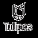 Agence Tulipes