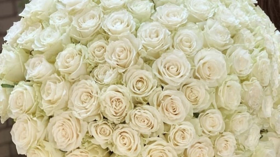 Serenity Roses