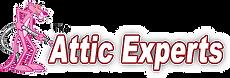 attic experts.png