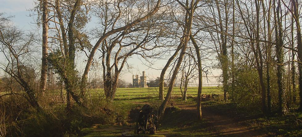 Haverholme Priory 3 jane harrison.jpg