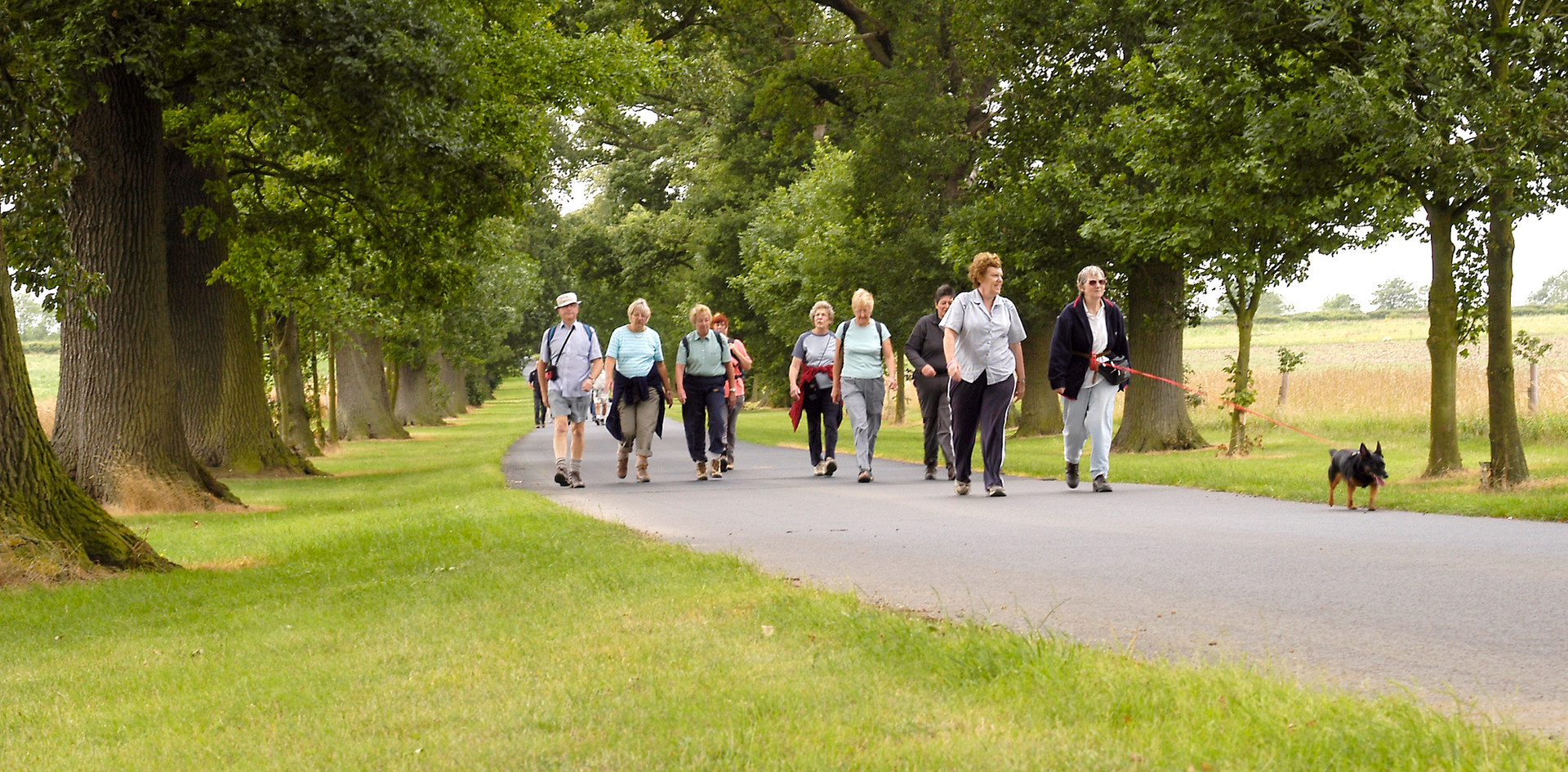 Walkers at Nocton.JPG