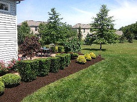 shrubs3-300x225.jpg
