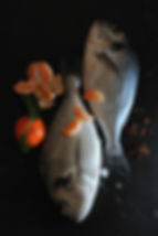 dorade clementine.jpg