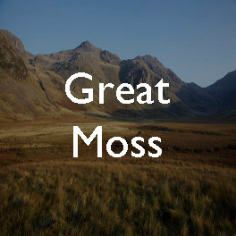 Wild spaces: Great Moss