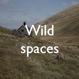 Wild spaces: the Carneddau, Snowdonia