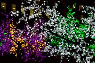 Lightwaves exhibition, Media City, Salford Quays, December 2016