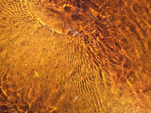 Peat-filled river, Crowden, Peak District