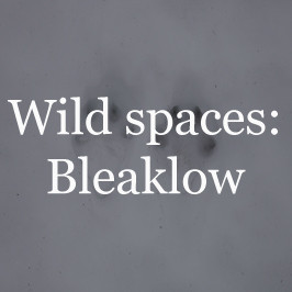 Wild spaces: Bleaklow