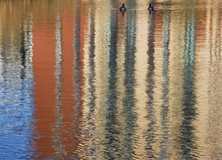 Reflections, Bridgewater Canal, Pomona