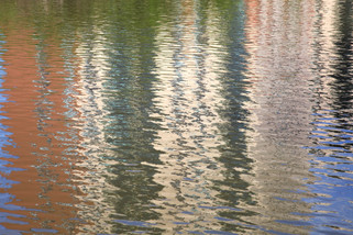 Bridgewater Canal, Pomona