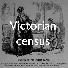 Curiosities of the Victorian census