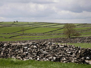 Fields near Litton