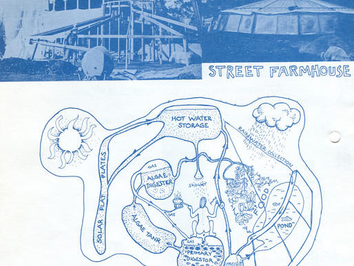 Street Farm: architecture and eco-anarchism