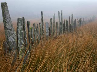 Slate fence near Blaenau Ffestiniog, Wales