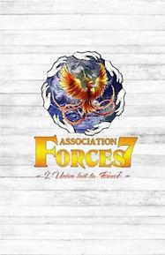 Survol Forces7.jpg