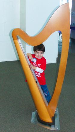 Laser Harp | CW Shaw Inc
