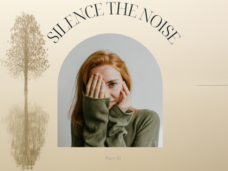 Silencing the Noise Part III