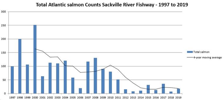 Total Adult Salmon Counts (Salmon & Grilse)