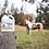 Thumbnail: Organic Pumpkin Seed Oil for Equine & Livestock
