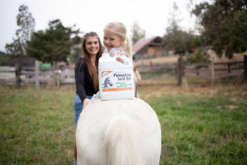 Organic Pumpkin Seed Oil for Equine & Livestock