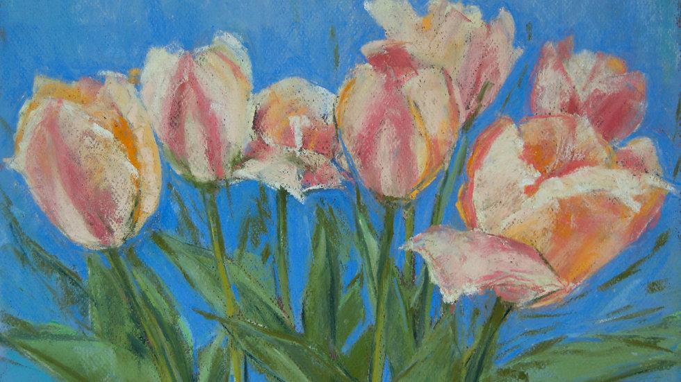 Tulips on a Blue Sky