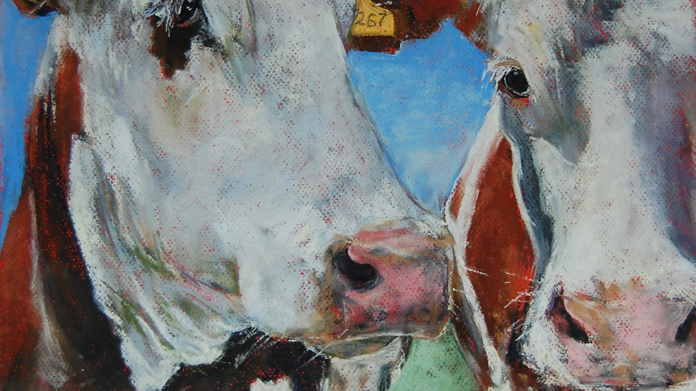Pair Of Dalby Bull Calves
