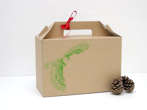 Flying Owl Gift Box