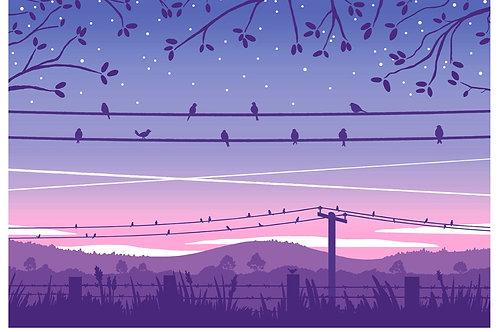 Birds at Sunrise Postcard