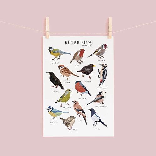 British Birds Print - A4