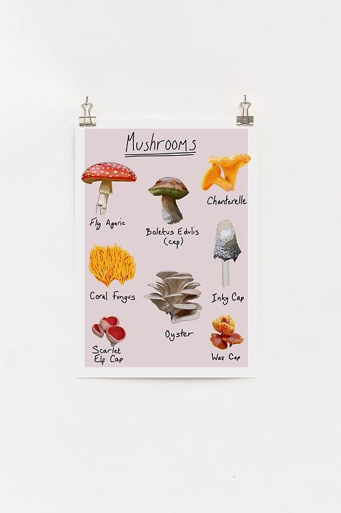 Mushrooms A4 digital Print