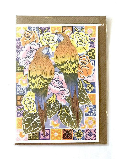 Macaws Card