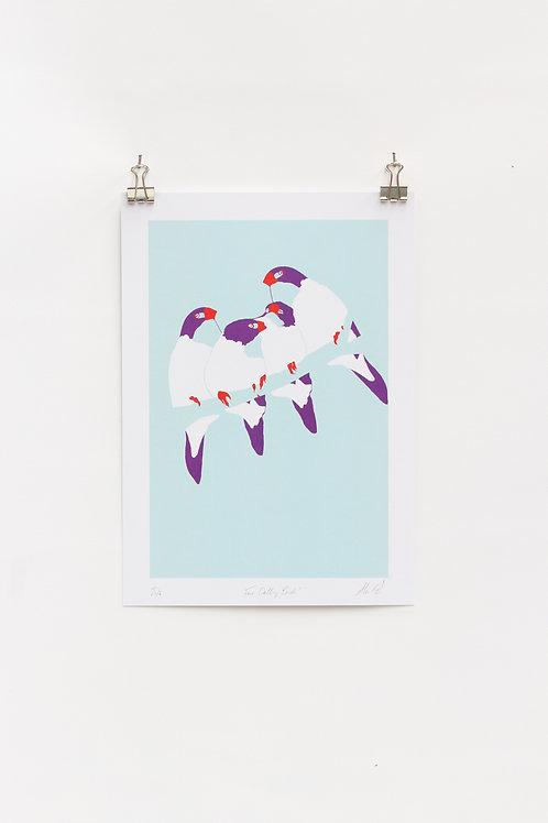 Four Calling Birds  |  Digital Print