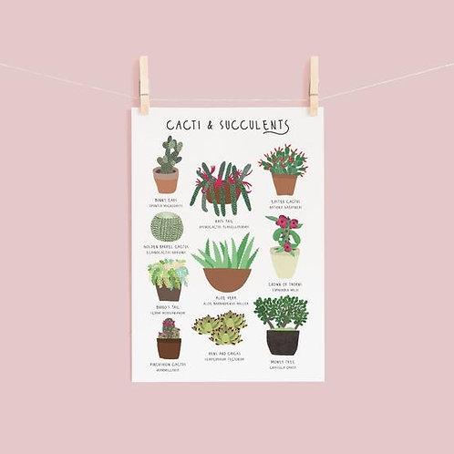 Cacti & Succulents Print - A4