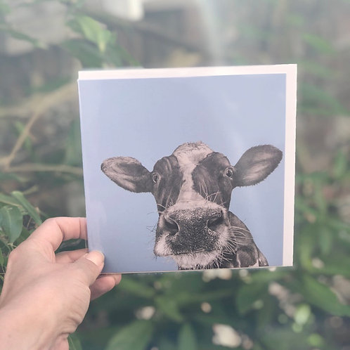 Henry the Cow Card