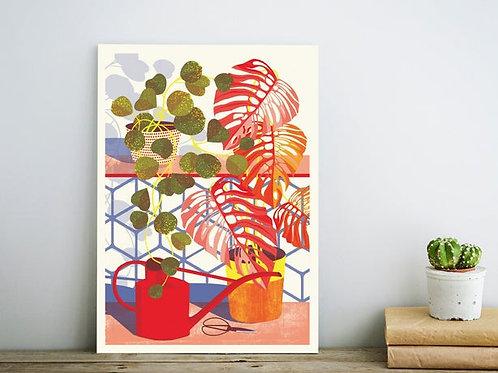 Hoya Print - A4