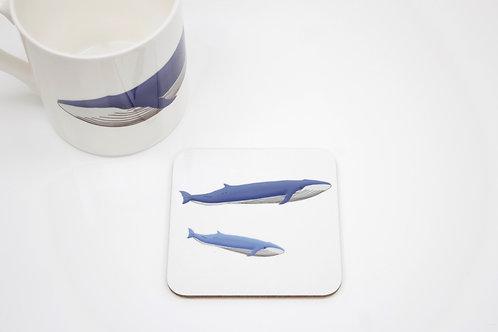 Blue Whales Coaster