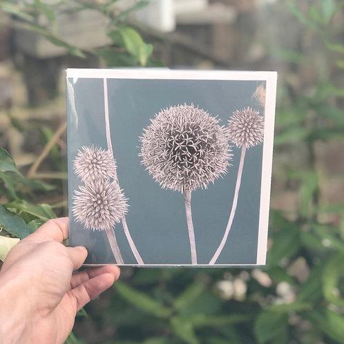 Alium Flowers Card