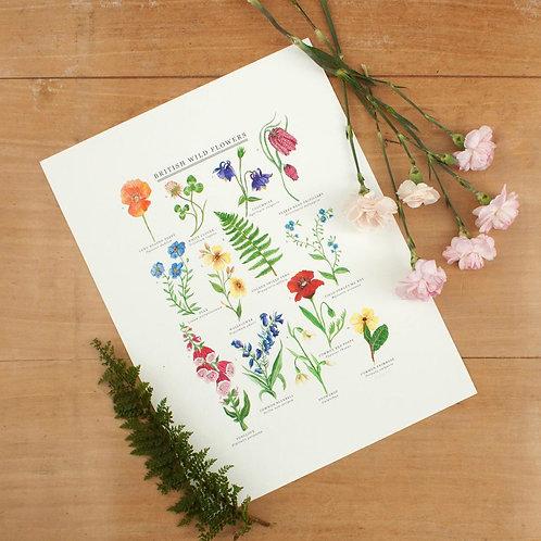 British Wild Flowers Giclée Print - 30x40cm (unframed)