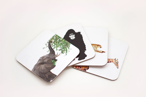 Set of Africa Coasters