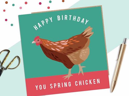 Happy Birthday Spring Chicken