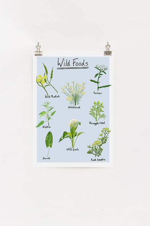 Wild Foods A4 digital Print
