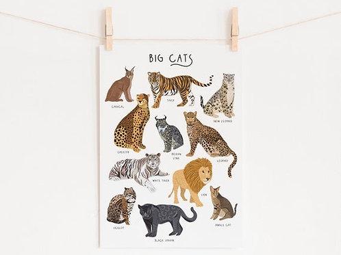 Big Cats Print - A4