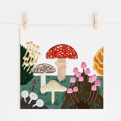 Funghi Print