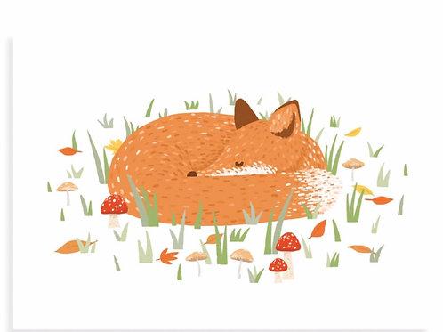 Sleeping Fox Postcard