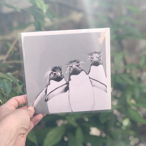 Rockhopper Penguins Card