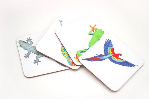 Jungle Coaster Collection