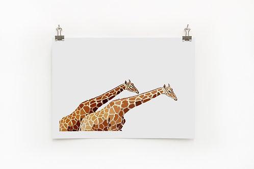 Giraffe A4 Print